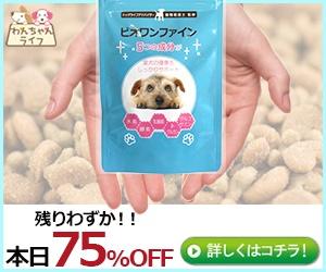 八方ふさがりの小型犬用スキンケアサプリ【ビオワンファイン】